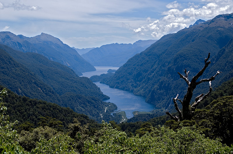 view from wilmot pass