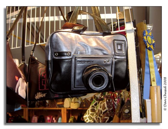 Camera Fashion Bag