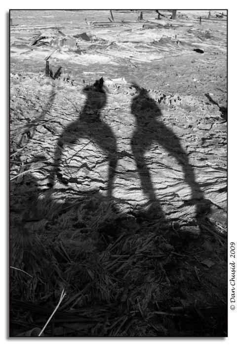 Bombay Shadows