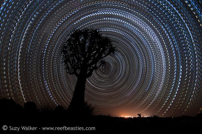 Morse code star trail