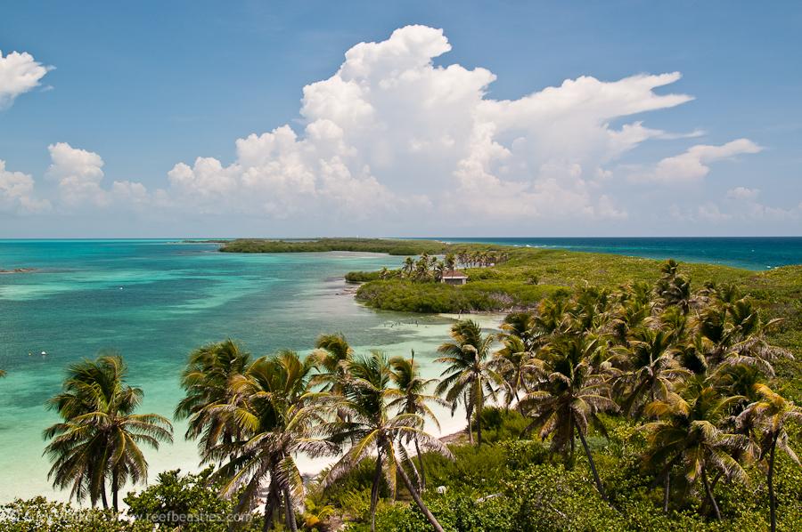 Isla Contoy 3