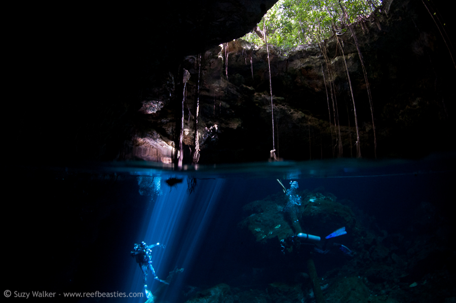 Taj Mahal Cenote Split with Alex & Eleo