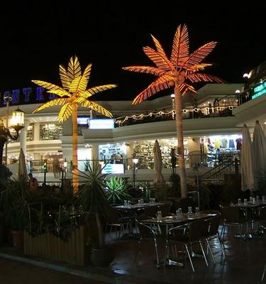 Neon Palm trees, Sharm 2005