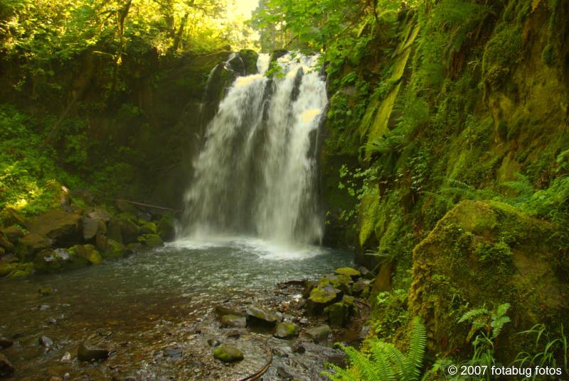 Beautiful Majestic Falls