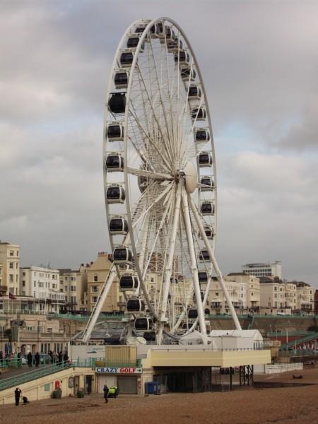 Brighton Eye