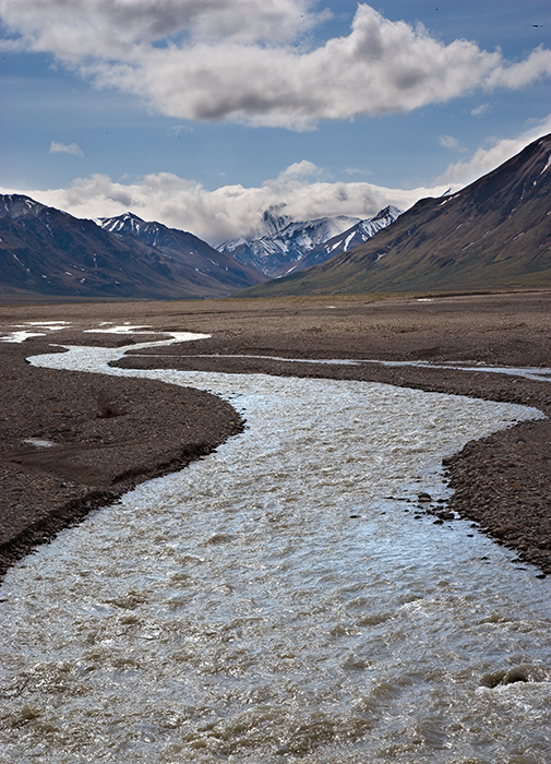 07-06 Toklat River Denali 04.JPG