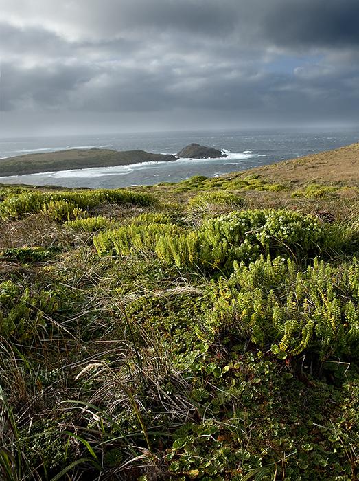 08-01 Cape Horn 02.JPG