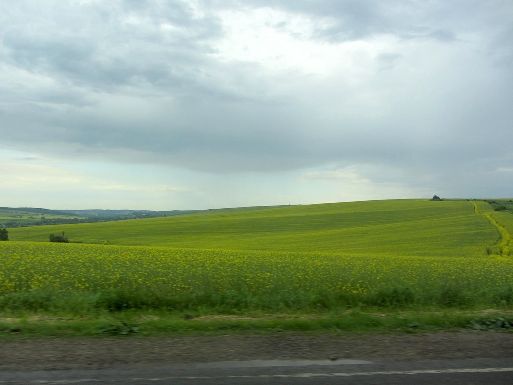 on the road from Lviv with Alex Denysenko for our first visit to Ukraine and Rohatyn in 2012