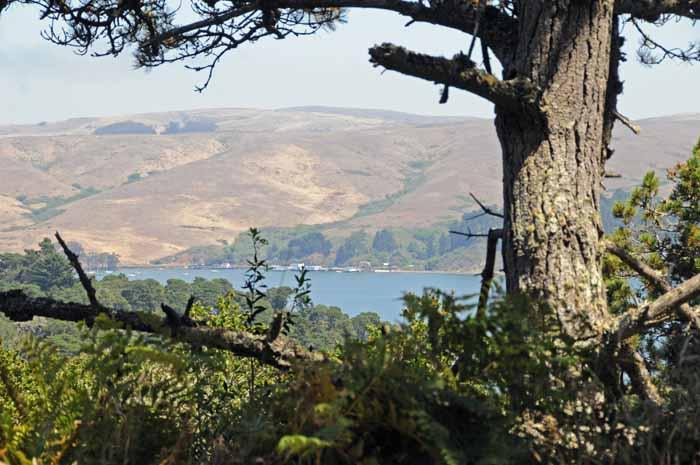Tomales Bay,Marin County,California