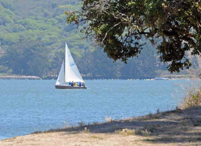 August on Tomales Bay,California