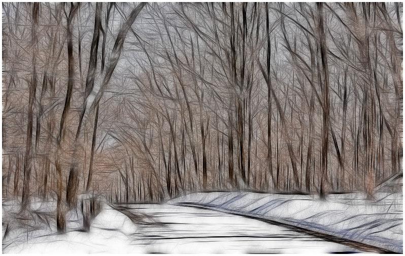 trees3941.jpg