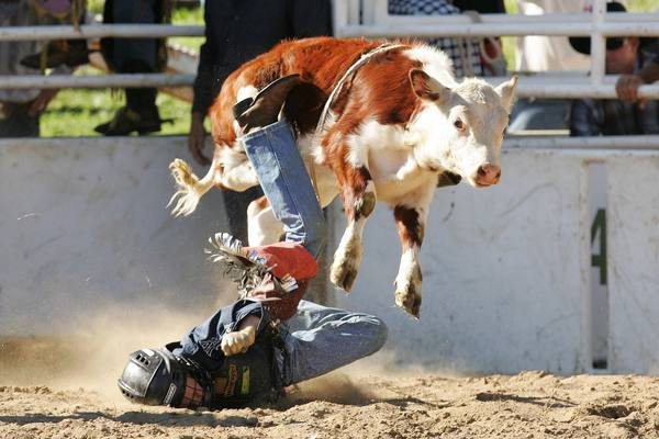 08_rodeo_cooma_15.jpg