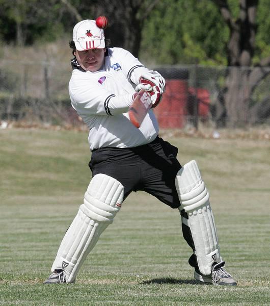 cricket03.jpg