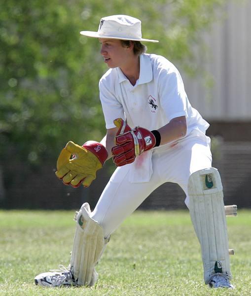 cricket06.jpg