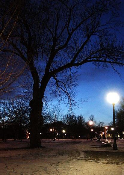 Park Lights,