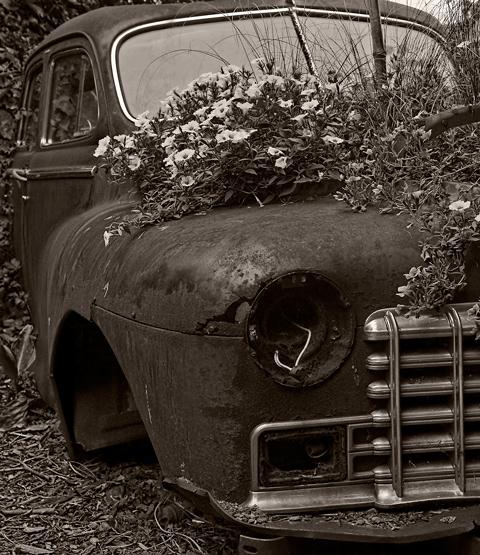 Vieille Dodge