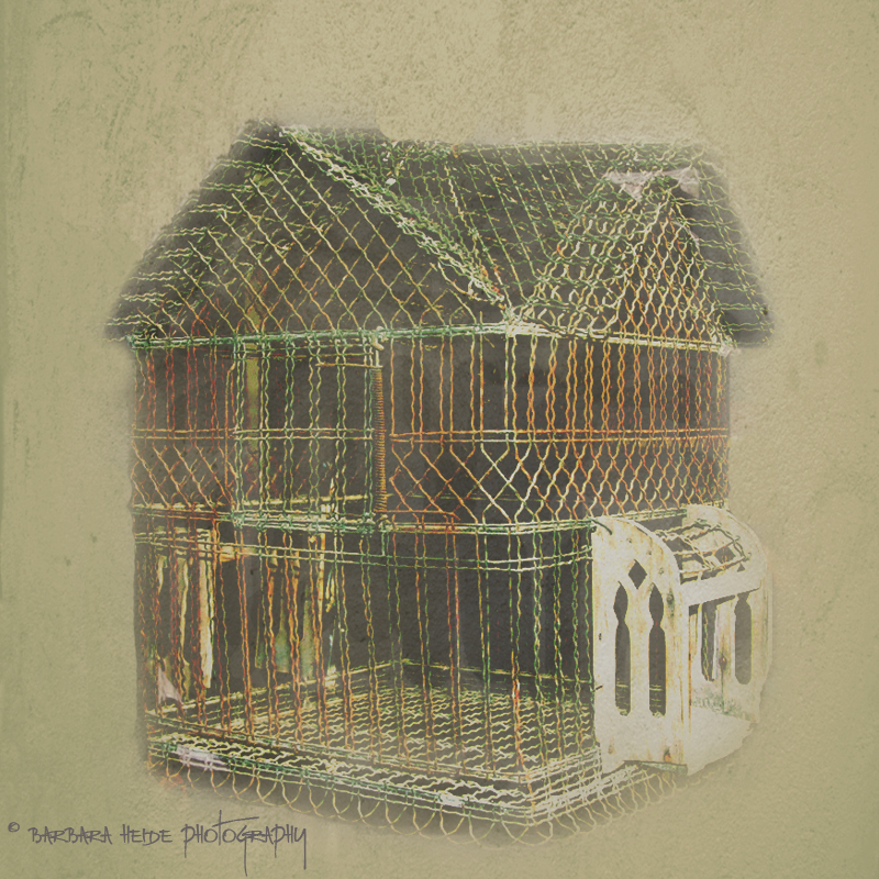 The Birds House