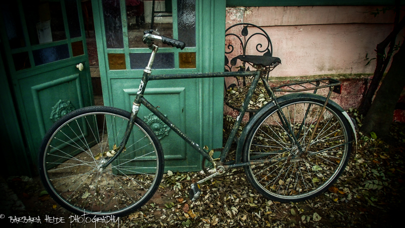 WEEKLY INFORMAL CHALLENGE 139: Out of the Ordinary - Vintage Bike
