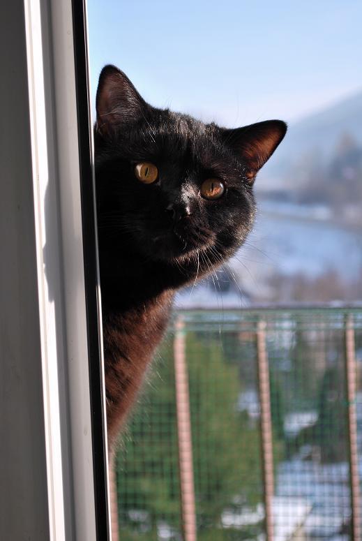 na balkonie.JPG