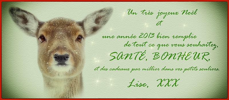 Voeux  2013.