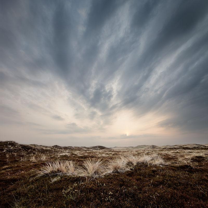 Moor at Bulbjerg