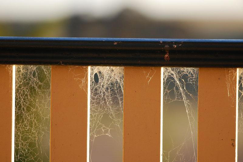 cobweb railing h.jpg