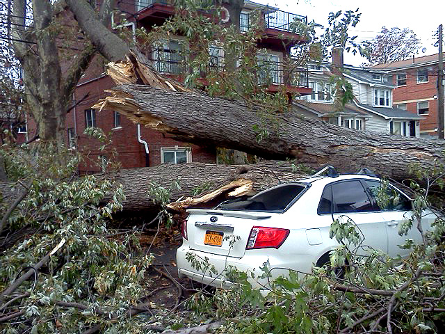 194th Street in Queens