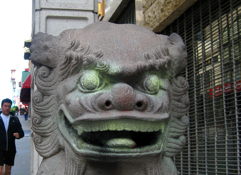 Dragon Gate dog