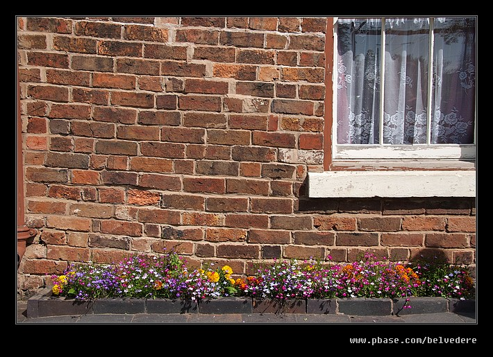 Tilted Cottage Flowers, Black Country Museum