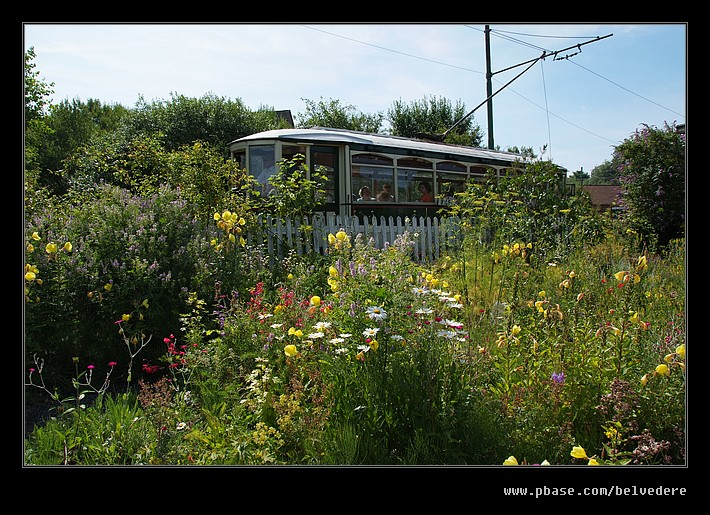 Toll House Garden #2, Black Country Museum