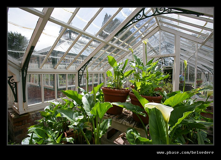 Sunnycroft Victorian Villa #29