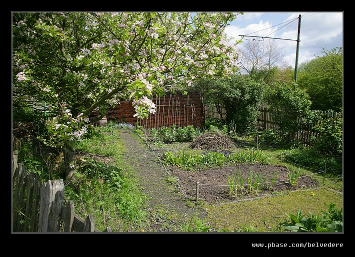 Toll House Vegetable Patch, Black Country Museum