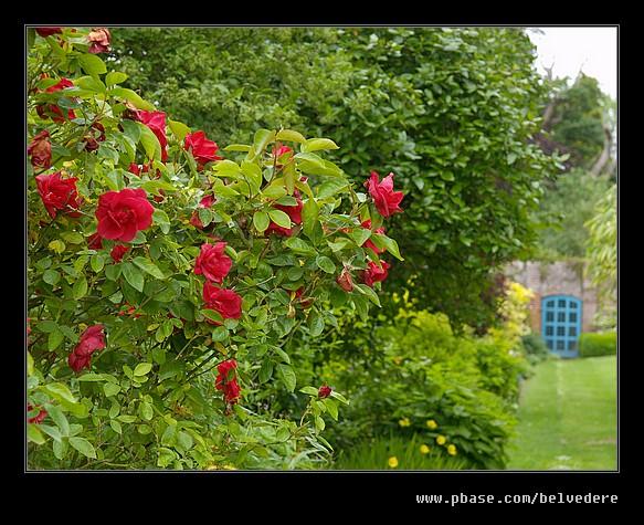 Croft Castle Walled Gardens #08