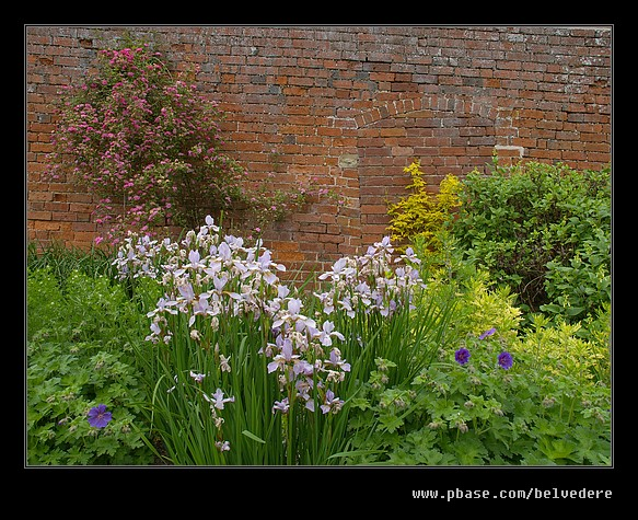Croft Castle Walled Gardens #14