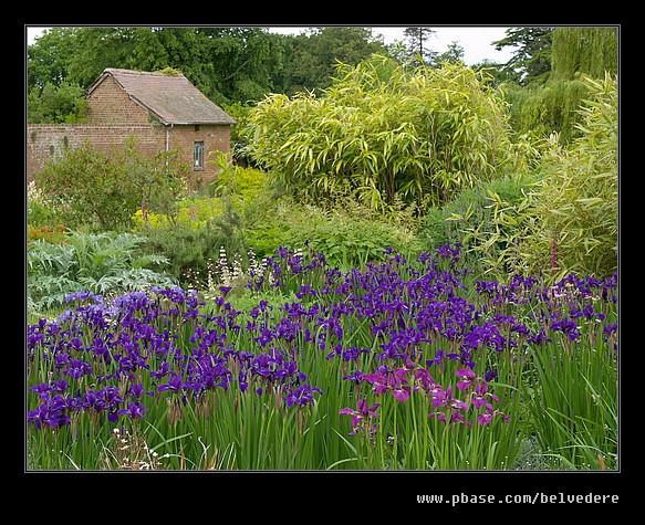 Croft Castle Walled Gardens #16