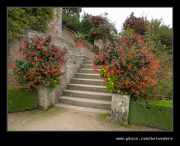 Powis Castle #04