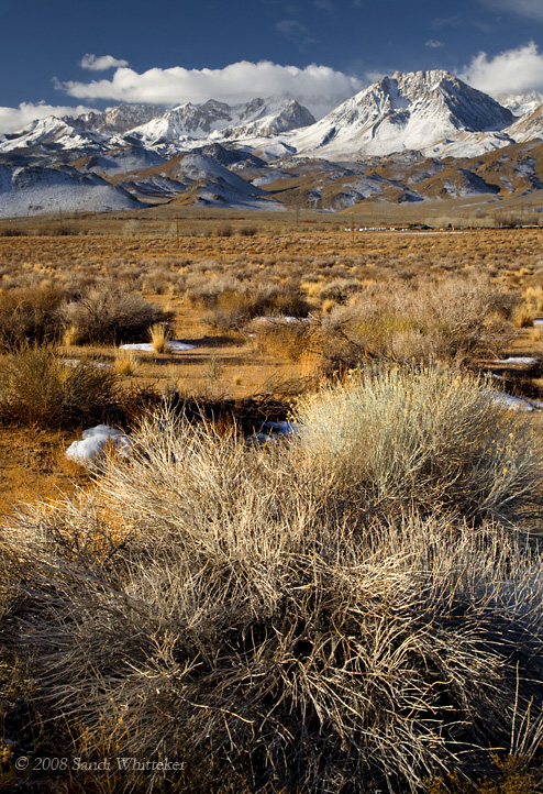 Sagebrush and Snow... Along Highway 395