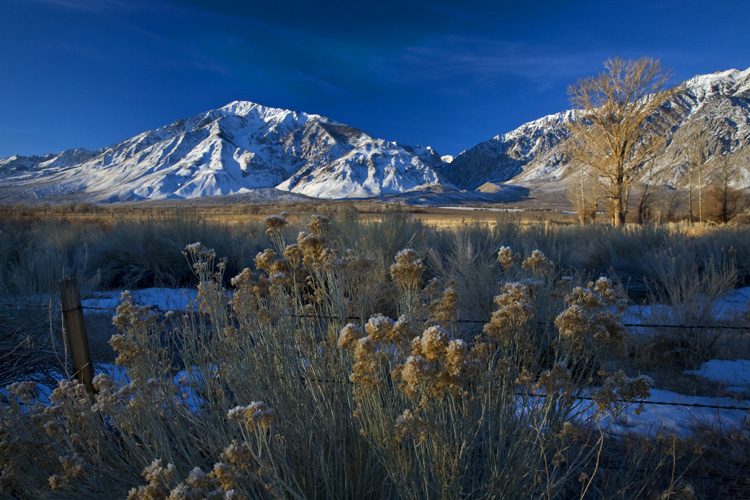 The First Rays of Sun Light Up the Eastern Sierras