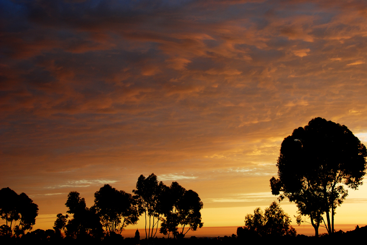 Overlooking Lake Murray, San Diego