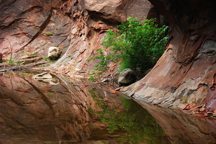 Reflections of Oak Creek