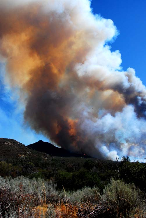 Plumes of this Fire Could Be Seen for Miles