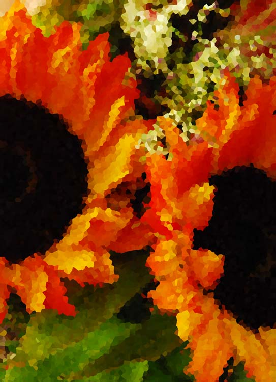 Pissaro Sunflowers