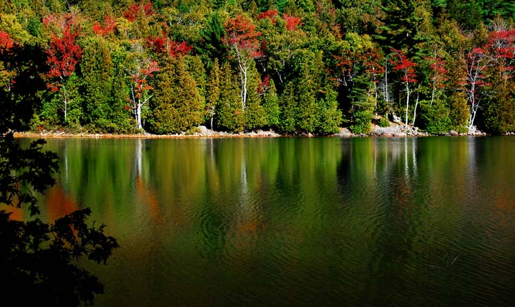 Reflections of Autumn on Bubble Pond