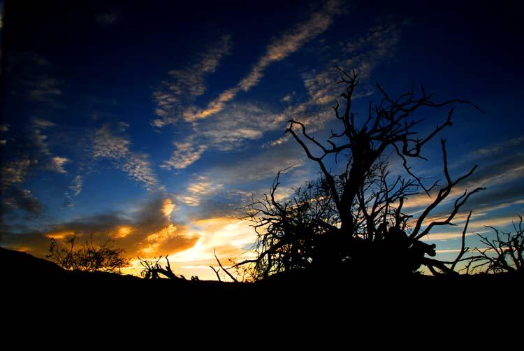 Sunset Colors Begin