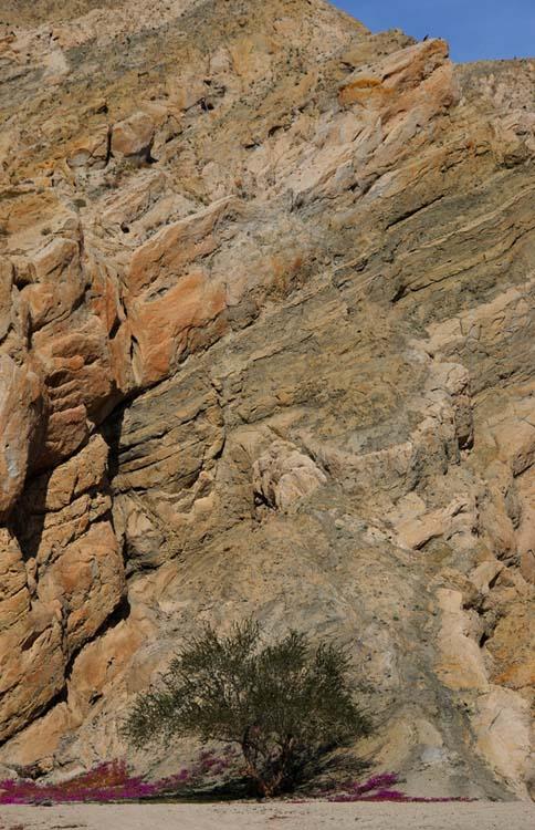 Dwarfed by the Mountain