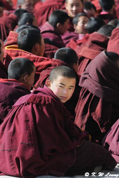 Labrang Monastery DSC_1199