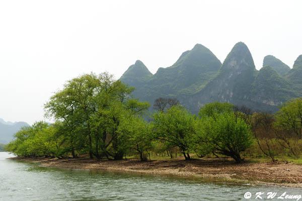 Li River DSC_7977