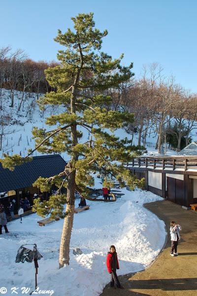 Shikabe Kanketsusen Park 03