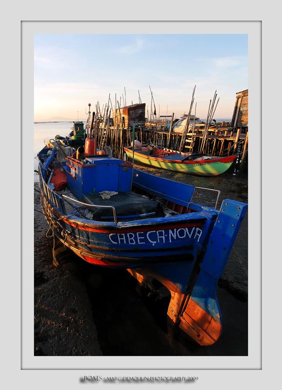 Boats 35 (Carrasqueira)