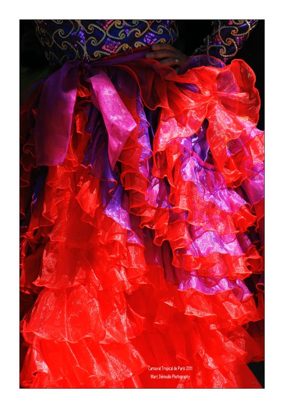 Paris Tropical Carnival 2011 - 55